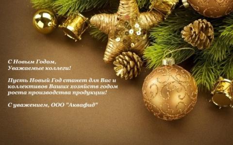 С Новым Годом, уважаемые коллеги!