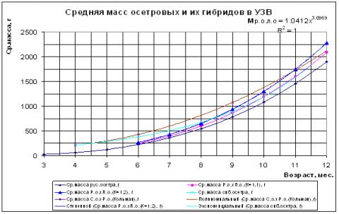Схема узв для осетра